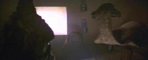 No sé si el hecho de que seamos aliens disculpa el hecho de que demos tanto ascazo…